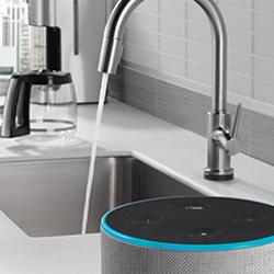 Delta VoiceIQ Technology