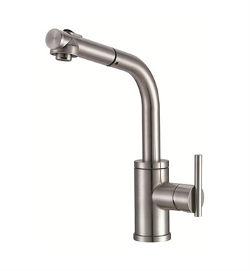 Danze D404558SS Parma™ Single Handle Pull-Out Kitchen Faucet in Stainless Steel