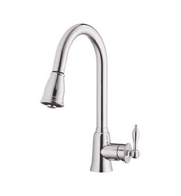 Danze Prince™ Single Handle Kitchen Pull-Down Faucet in Chrome