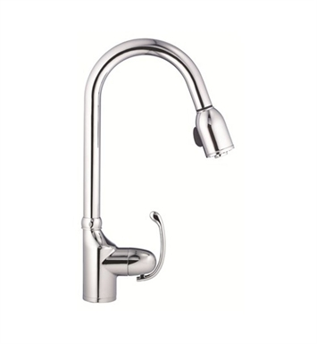 Danze Anu™ Single Handle Pull-Down Kitchen Faucet in Chrome