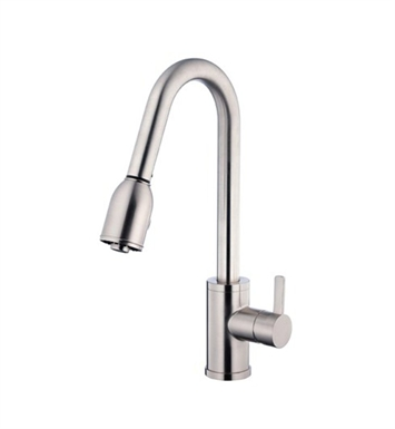 Danze Amalfi™ Single Handle Pull-Down Kitchen Faucet in Stainless Steel
