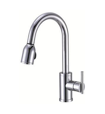Danze D457058 Parma™ Single Handle Pull-Down Kitchen Faucet in Chrome