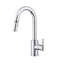 Danze Parma™ Single Handle Pull-Down Kitchen Faucet in Chrome