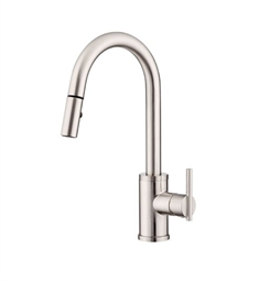 Danze Parma™ Single Handle Pull-Down Kitchen Faucet in Stainless Steel