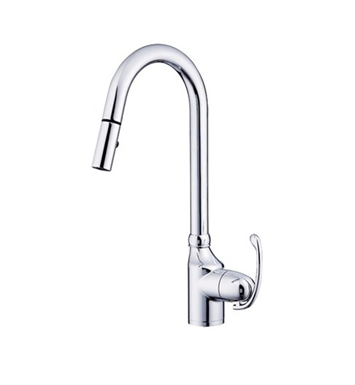 Danze D457020 Anu™ Single Handle Pull-Down Kitchen Faucet in Chrome