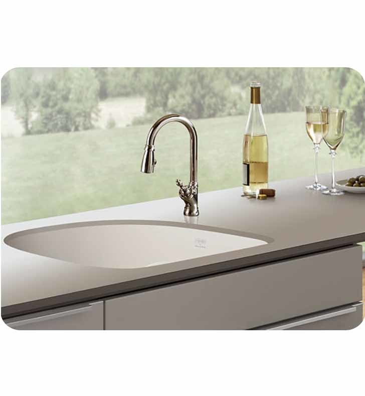 Franke Black Kitchen Sink: Franke PRK11021MB Prestige Single Basin Undermount